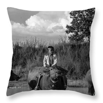 Boy And Cows Throw Pillow
