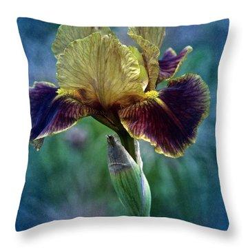Vintage Boy Wonder Iris Throw Pillow by Richard Cummings