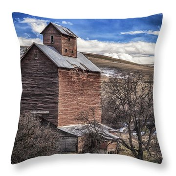 Throw Pillow featuring the photograph Boyd Flour Mill by Cat Connor