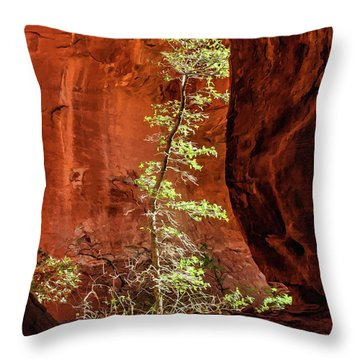 Boynton Canyon 07-034 Throw Pillow by Scott McAllister