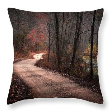 Boz Mill Road Throw Pillow by Bill Stephens