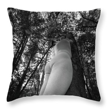 BP Throw Pillow by Catherine Lau