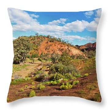 Bracchina Gorge Flinders Ranges South Australia Throw Pillow by Bill Robinson