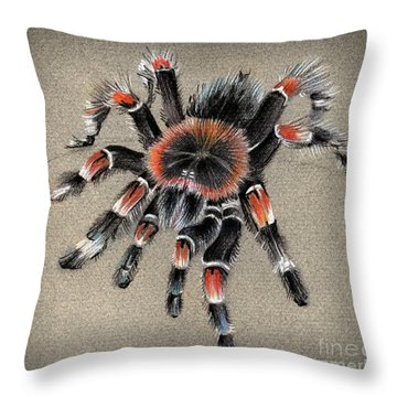Brachypelma Smithi  Mexican Red Knee Tarantula Throw Pillow