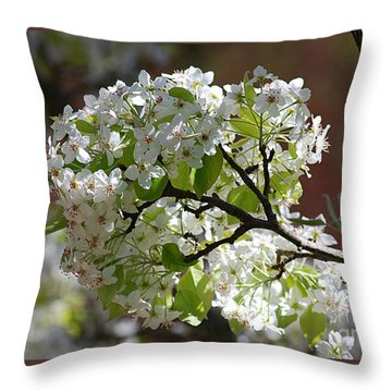 Throw Pillow featuring the photograph Bradford Pear Blossoms 20120402_114a by Tina Hopkins