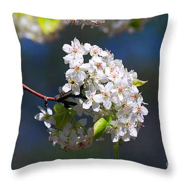 Throw Pillow featuring the photograph Bradford Pear Blossoms 20120402_116a by Tina Hopkins