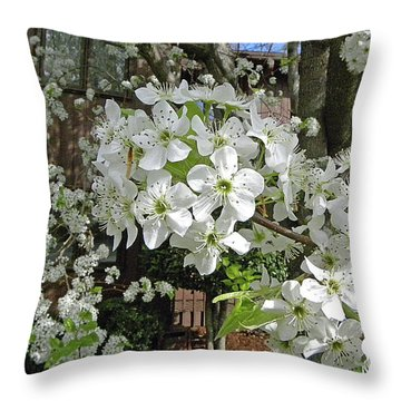 Throw Pillow featuring the photograph Bradford Pear by Larry Bishop