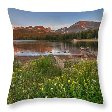 Brainard Lake Throw Pillow by Gary Lengyel