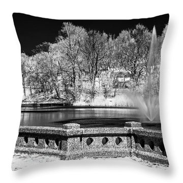 Throw Pillow featuring the photograph Branch Brook Park New Jersey Ir by Susan Candelario