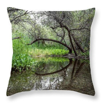 Branch Reflections Throw Pillow