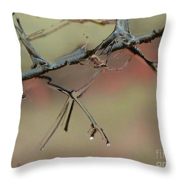 Branch With Water Abstract Throw Pillow by Craig Walters