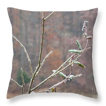 Branches In Ice Throw Pillow