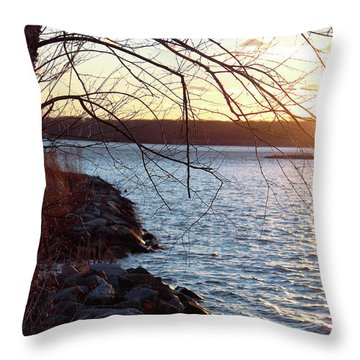 Late-summer Riverbank Throw Pillow
