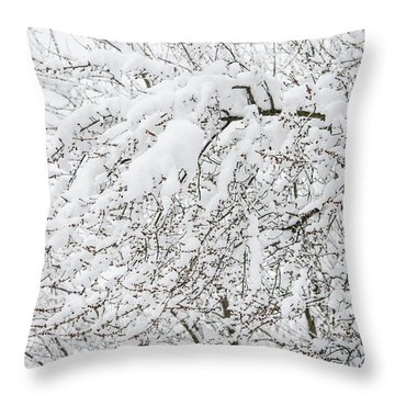 Branches Weighted With Snow Throw Pillow