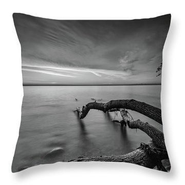 Branching Out - Bw Throw Pillow