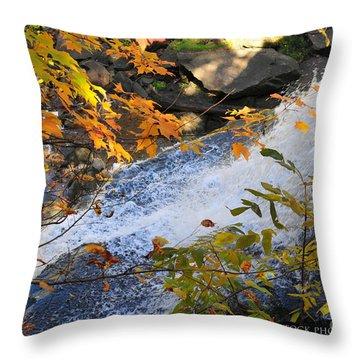 D30a-18 Brandywine Falls Photo Throw Pillow