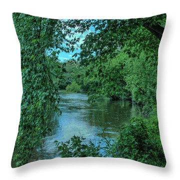 Throw Pillow featuring the photograph Brandywine River by Richard Goldman