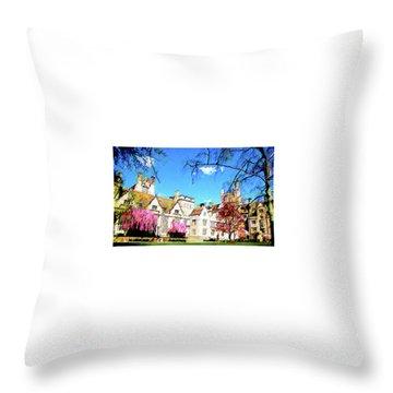 Branford Throw Pillow