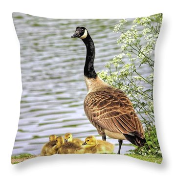 Branta Canadensis  #canadagoose Throw Pillow by John Edwards