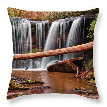 Brasstown Falls 002 Throw Pillow