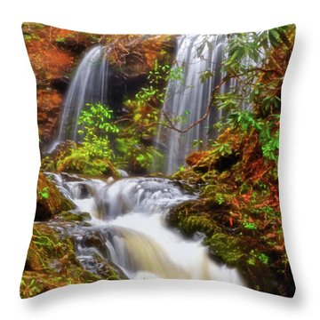 Brasstown Falls 013 Throw Pillow by George Bostian