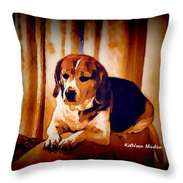 Throw Pillow featuring the photograph Bravo In Brown Satin by KLM Kathel