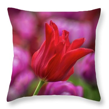 Throw Pillow featuring the photograph Brazenly Delicate by Bill Pevlor