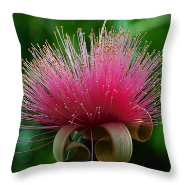 Brazilian Barbers Brush Throw Pillow by Gary Dean Mercer Clark
