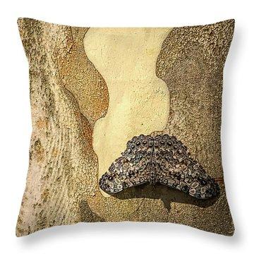 Brazilian Moth In Juiz De Fora Throw Pillow