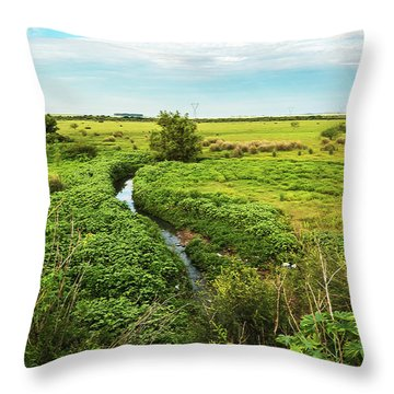 Brazilian Pampa Throw Pillow