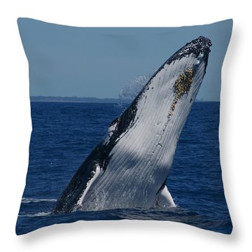Throw Pillow featuring the photograph Breaching Humpback Whale by Gary Crockett