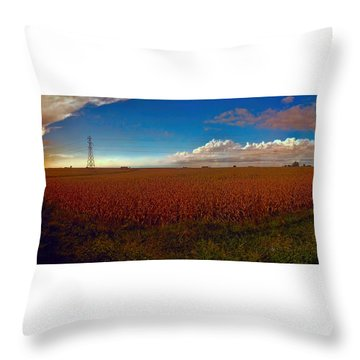 Bread Basket Dusk Throw Pillow by Dave Luebbert