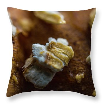 Throw Pillow featuring the photograph Bread Macro Food by David Haskett