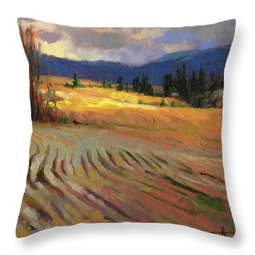 Break In The Weather Throw Pillow