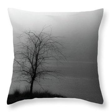 Break Through Throw Pillow