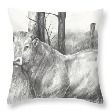 Throw Pillow featuring the drawing Breaker Study by Meagan  Visser