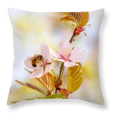 Throw Pillow featuring the photograph Breakfast At Sakura by Alexander Senin