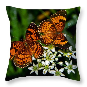 Throw Pillow featuring the photograph Breakfast At The Gardens 010 by George Bostian
