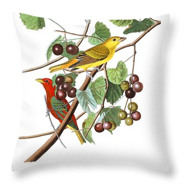 Throw Pillow featuring the photograph Breakfast Time by Munir Alawi
