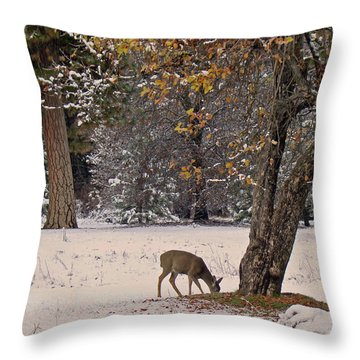 Throw Pillow featuring the photograph Breakfast Time by Walter Fahmy