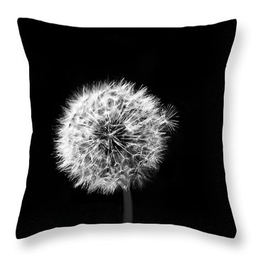 Breaking Away Throw Pillow