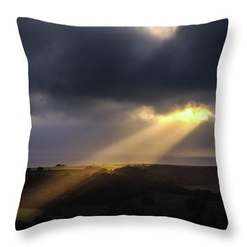 Throw Pillow featuring the photograph Breaking Through by Will Gudgeon