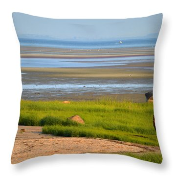 Breakwater Beach At Low Tide Throw Pillow