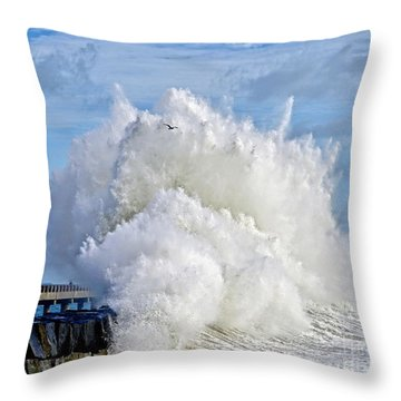 Breakwater Explosion Throw Pillow