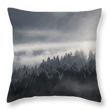 Throw Pillow featuring the photograph Breath Of The Forest by Yuri Santin
