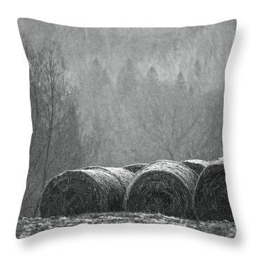 Breathing Spell.. Throw Pillow