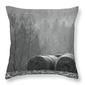 Breathing Spell.. Throw Pillow by Nina Stavlund