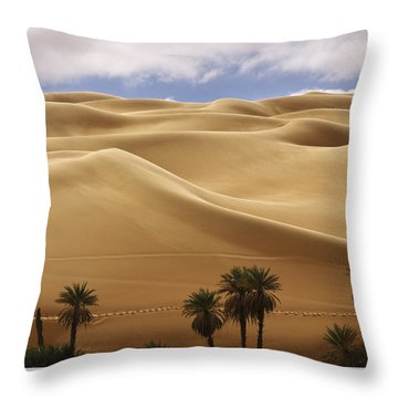 Breathtaking Sand Dunes Throw Pillow