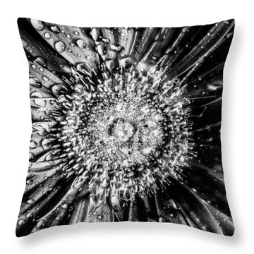 Brewer Bw Throw Pillow by Matti Ollikainen