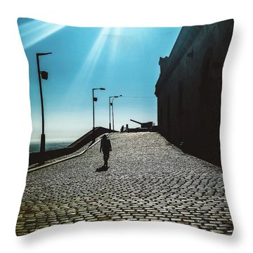 Throw Pillow featuring the photograph Brick By Brick by Colleen Kammerer